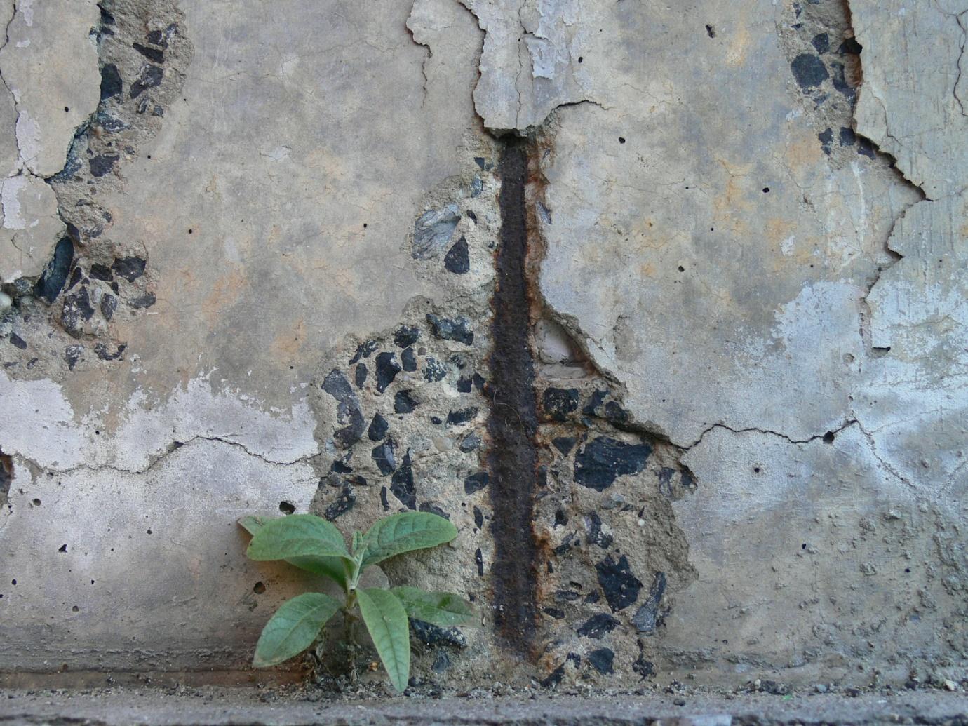 Промасливание бетона проблемы керамзитобетона